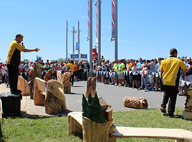 Live Chainsaw Carving Auction