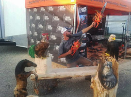 Chainsaw Carving Wooden Bench