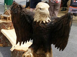 Eagle and Bench Wood Chainsaw Carving
